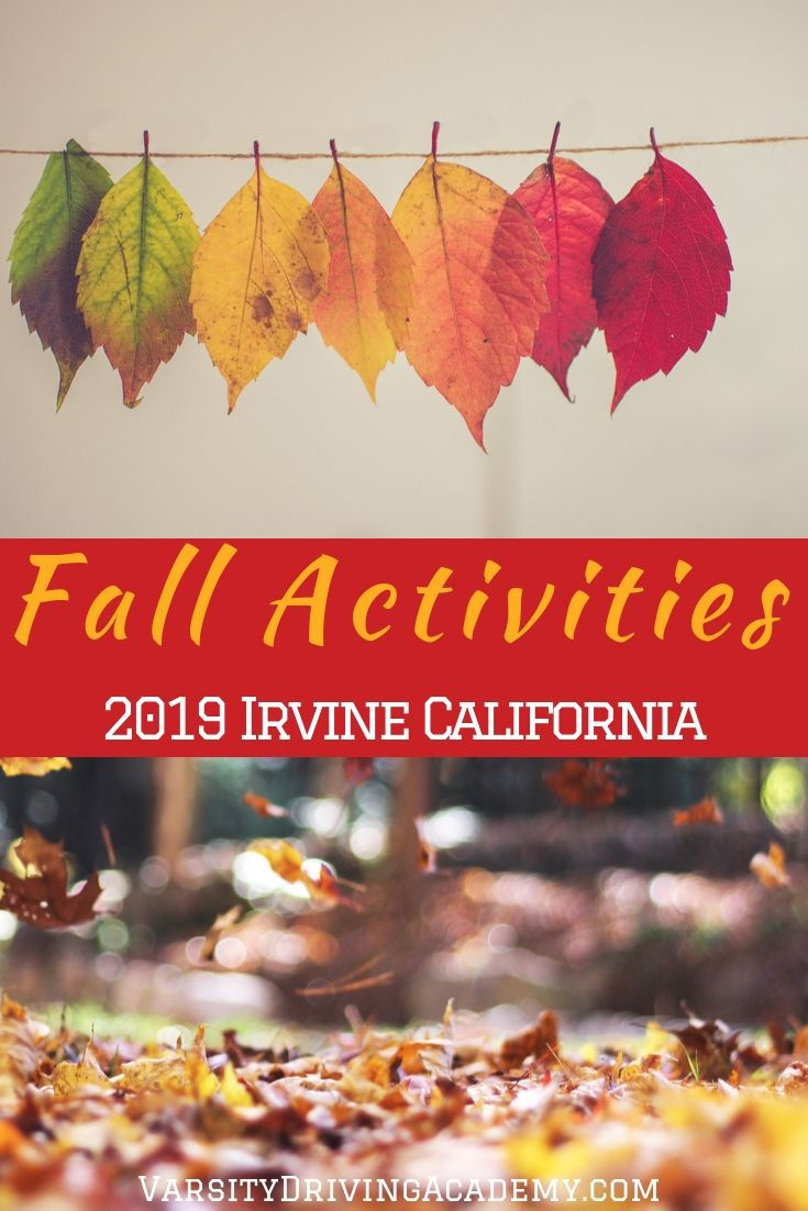 You are sure to have a great time at any of the fun and spooky 2019 fall activities in Irvine California with your family and friends.