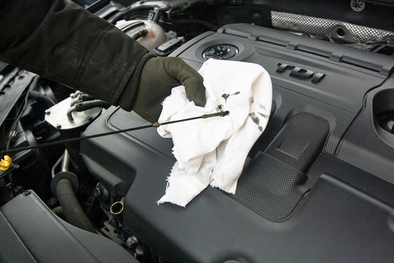 What is a Car Tune Up Person Checking the Oil of a Car