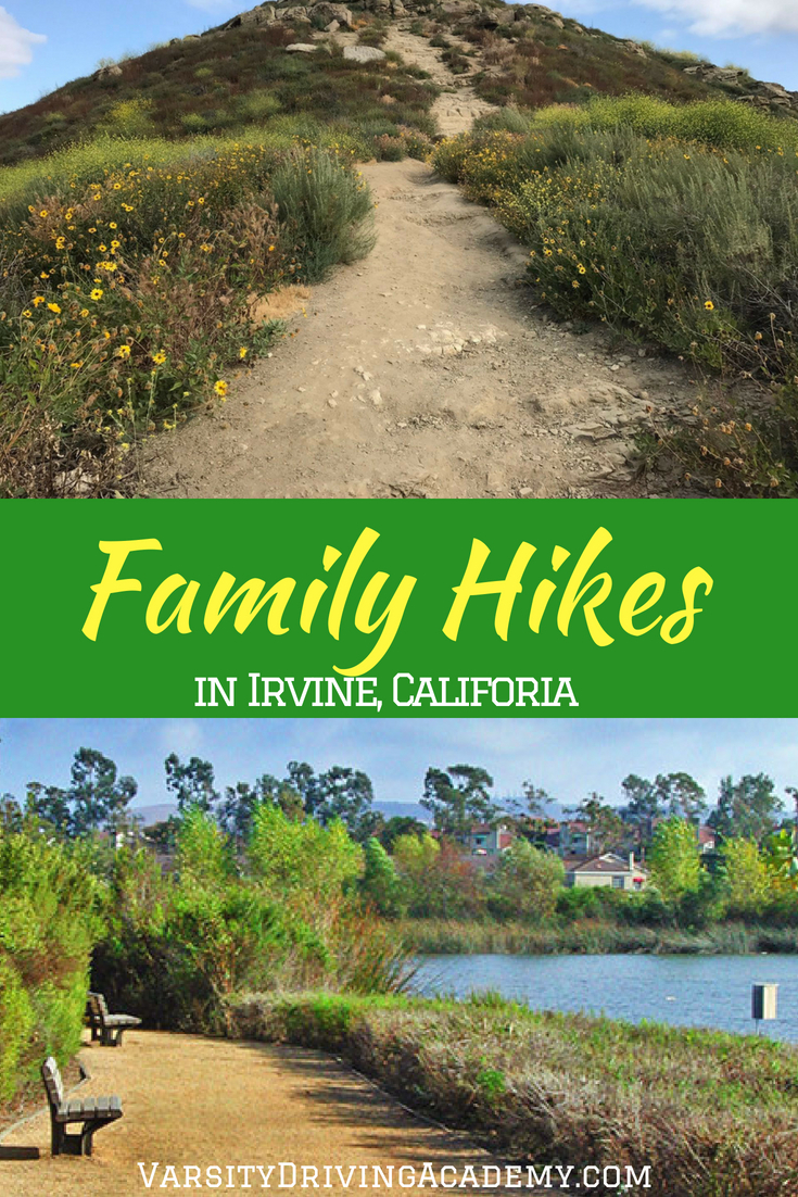 Take the whole family to enjoy the best places for a family hike in Irvine, just don't forget the water and the camera because you'll need them.