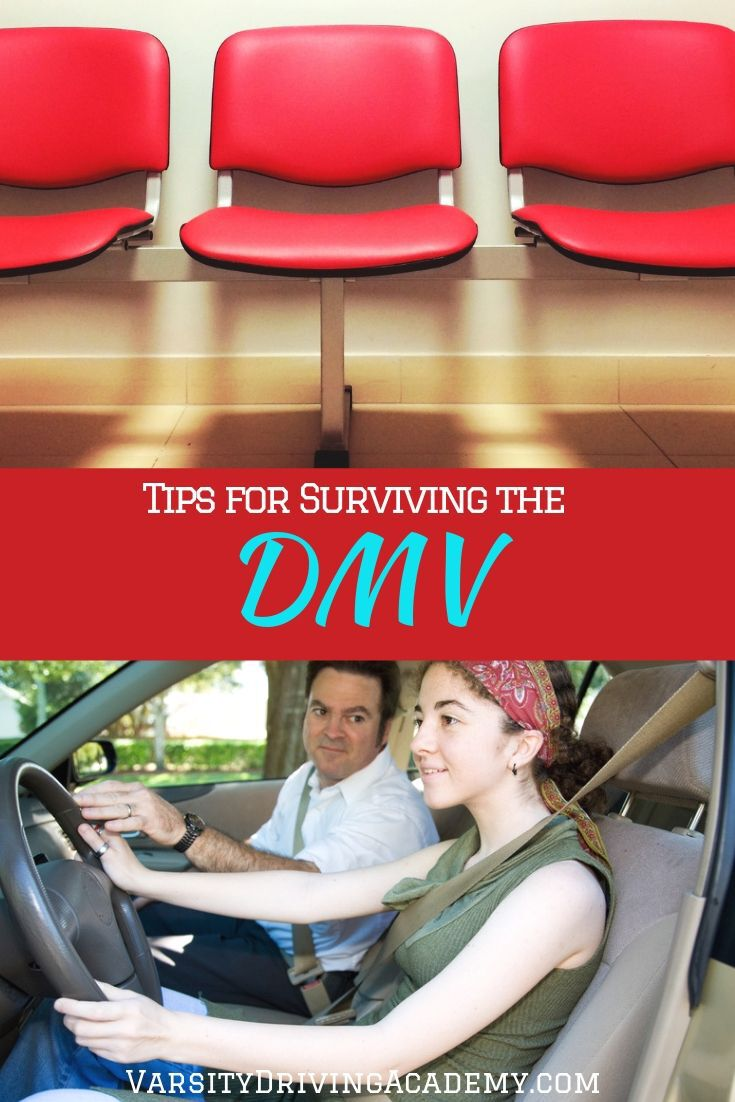 Figure out how to survive the DMV before you head out to get your learner's permit, driver's license or any other DMV task.