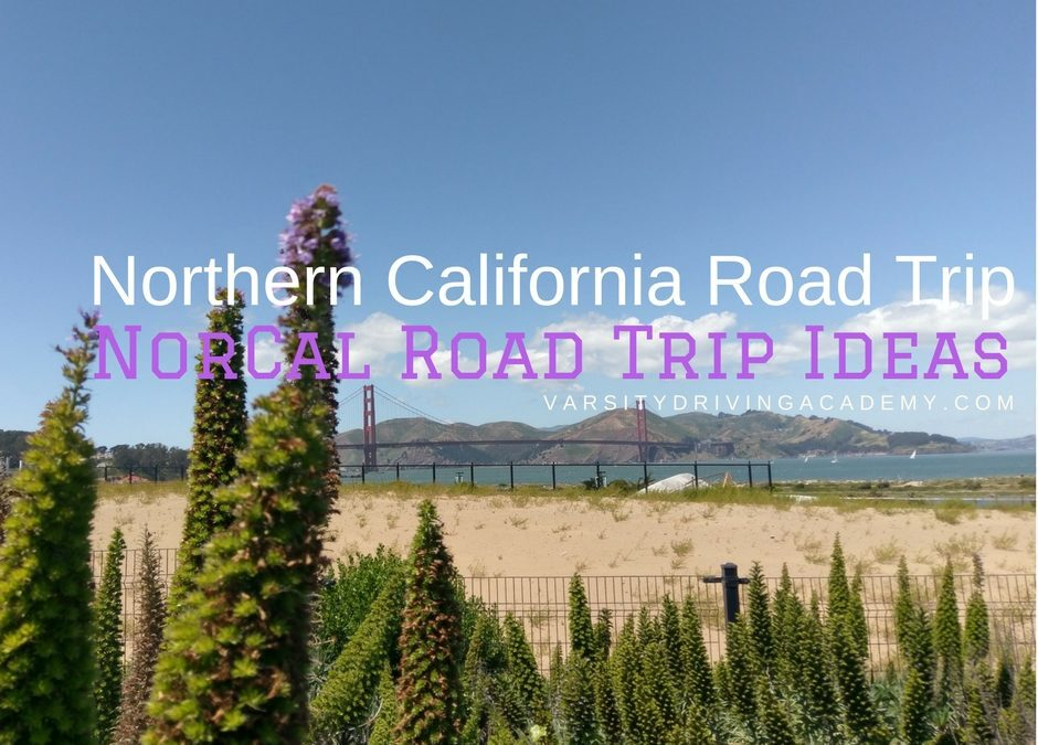 Spend your summer taking a beautiful Northern California road trip and discover why so many people love Norcal road trips.
