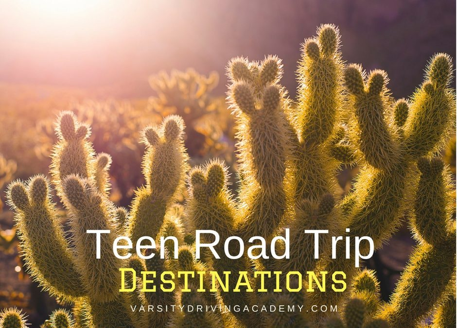 Teen Road Trip Destinations