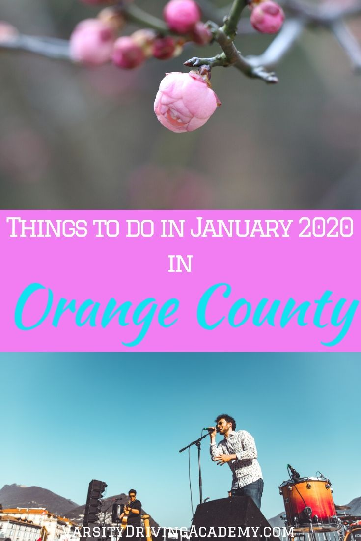 Head out with family and friends to celebrate the start of the new year all month long with the best things to do in January 2020 in Orange County.