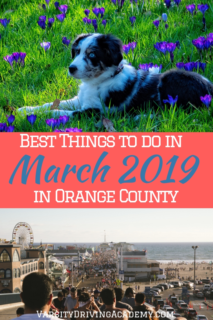 You don't need to look too far if you're looking for the best things to do in March 2019 in Orange County for the whole family.