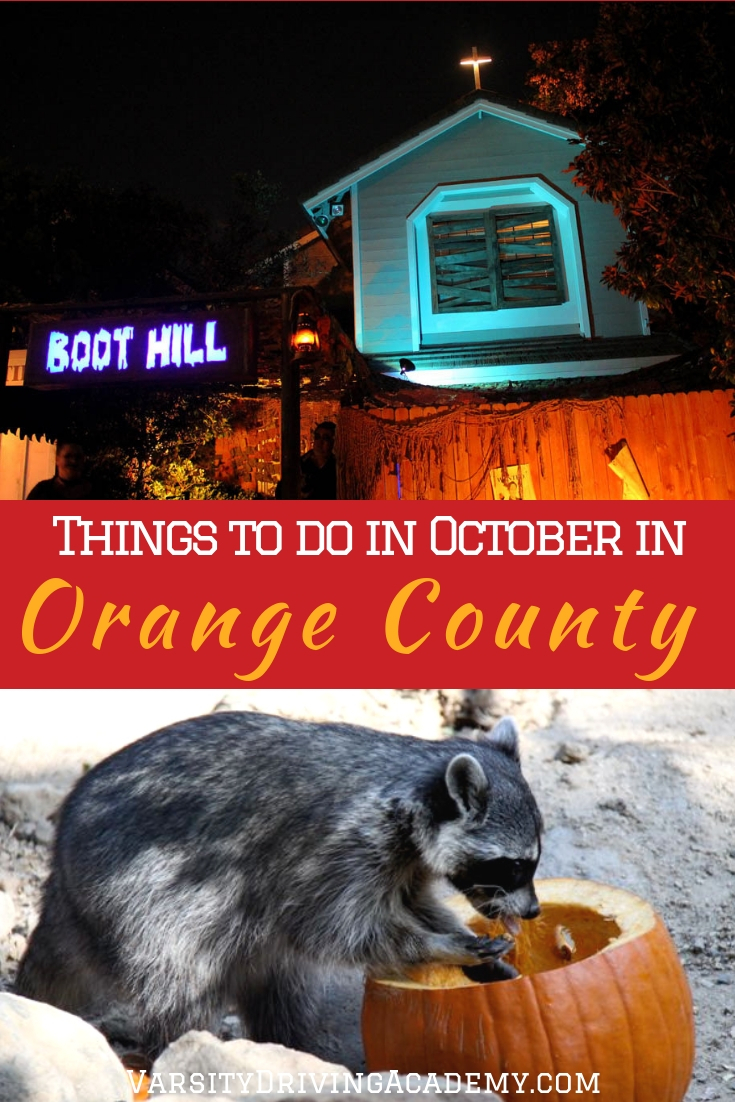 Figure out which of the best things to do in October 2018 in Orange County and kick off the holiday season with a spooky bang.