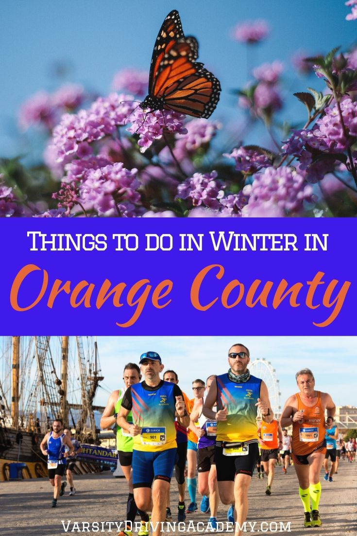 Discover the best things to do in winter in Orange County that is fun for all ages and take full advantage of the warmer winters.