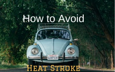 How to Avoid Heat Stroke in Your Vehicle